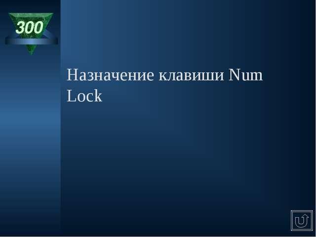 300 Назначение клавиши Num Lock