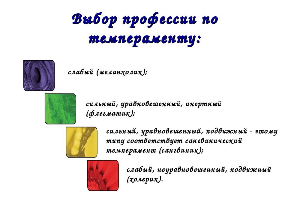 Выбор профессии по темпераменту: сильный, уравновешенный, подвижный - этому т...