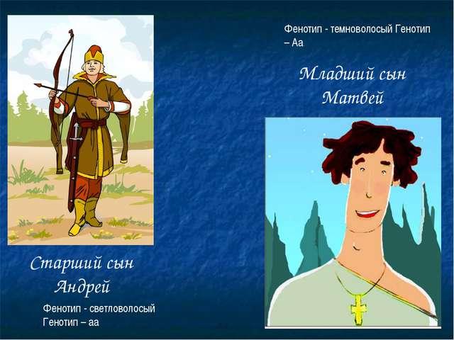 Старший сын Андрей Младший сын Матвей Фенотип - светловолосый Генотип – аа Фе...