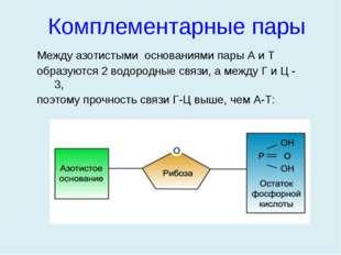 Между азотистыми основаниями пары А и Т образуются 2 водородные связи, а межд