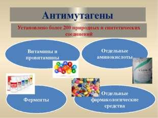 Антимутагены Витамины и провитамины Отдельные аминокислоты Ферменты Установле