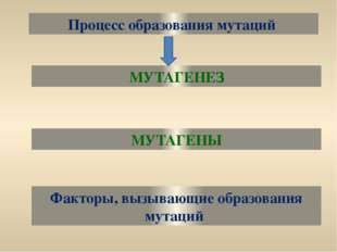 Процесс образования мутаций МУТАГЕНЕЗ МУТАГЕНЫ Факторы, вызывающие образовани
