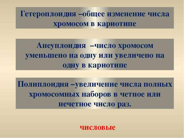 Гетероплоидия –общее изменение числа хромосом в кариотипе Анеуплоидия –число...
