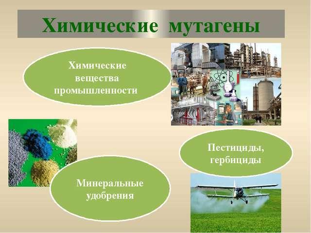 Химические мутагены Химические вещества промышленности Минеральные удобрения...