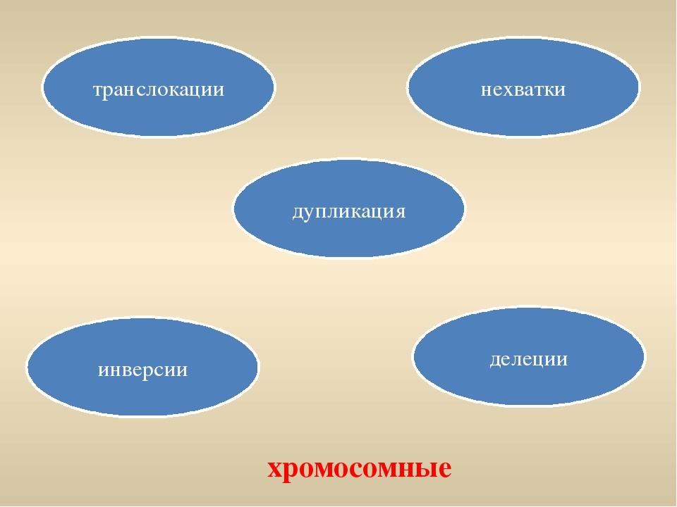 транслокации инверсии делеции нехватки дупликация хромосомные