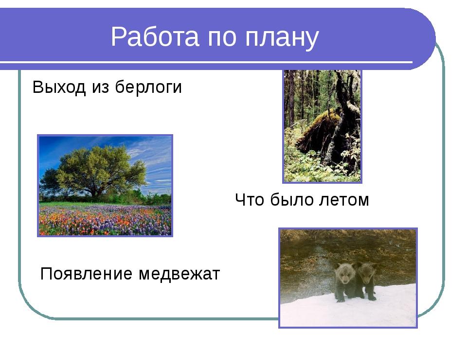 Работа по плану Появление медвежат Выход из берлоги Что было летом