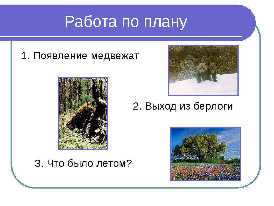 Работа по плану 1. Появление медвежат 2. Выход из берлоги 3. Что было летом?