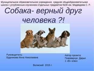 Собака- верный друг человека ?! . Муниципальное образовательное учреждение ср