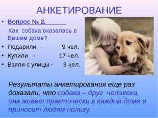 АНКЕТИРОВАНИЕ Вопрос № 2. Как собака оказалась в Вашем доме? Подарили - 9 чел