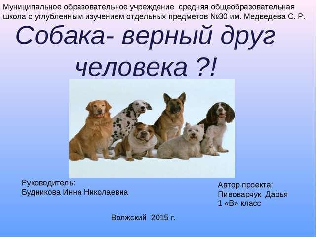 Собака- верный друг человека ?! . Муниципальное образовательное учреждение ср...