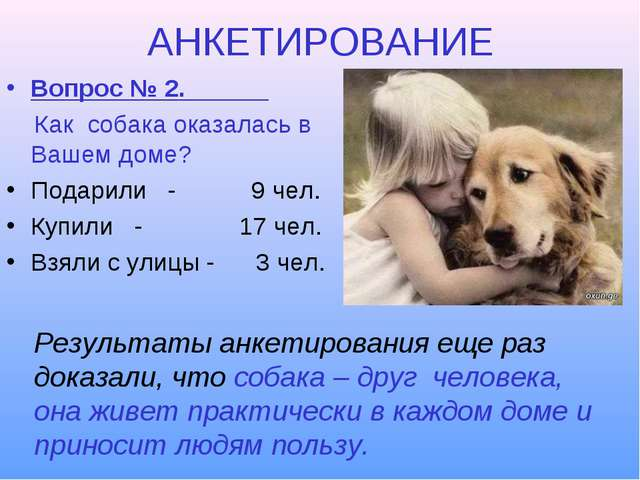 АНКЕТИРОВАНИЕ Вопрос № 2. Как собака оказалась в Вашем доме? Подарили - 9 чел...