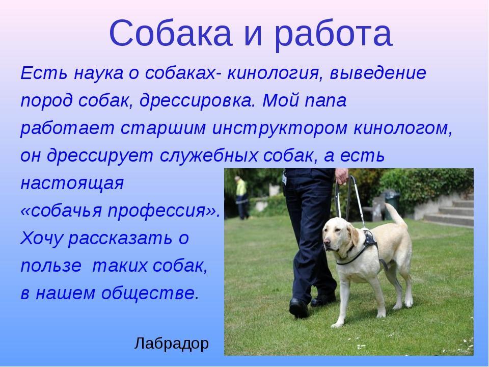 Собака и работа Есть наука о собаках- кинология, выведение пород собак, дресс...
