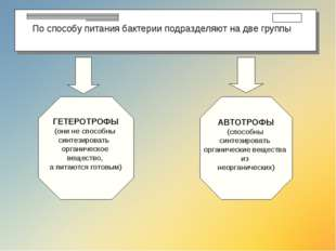 По способу питания бактерии подразделяют на две группы ГЕТЕРОТРОФЫ (они не с