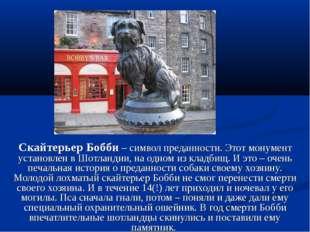 Скайтерьер Бобби – символ преданности. Этот монумент установлен в Шотландии,