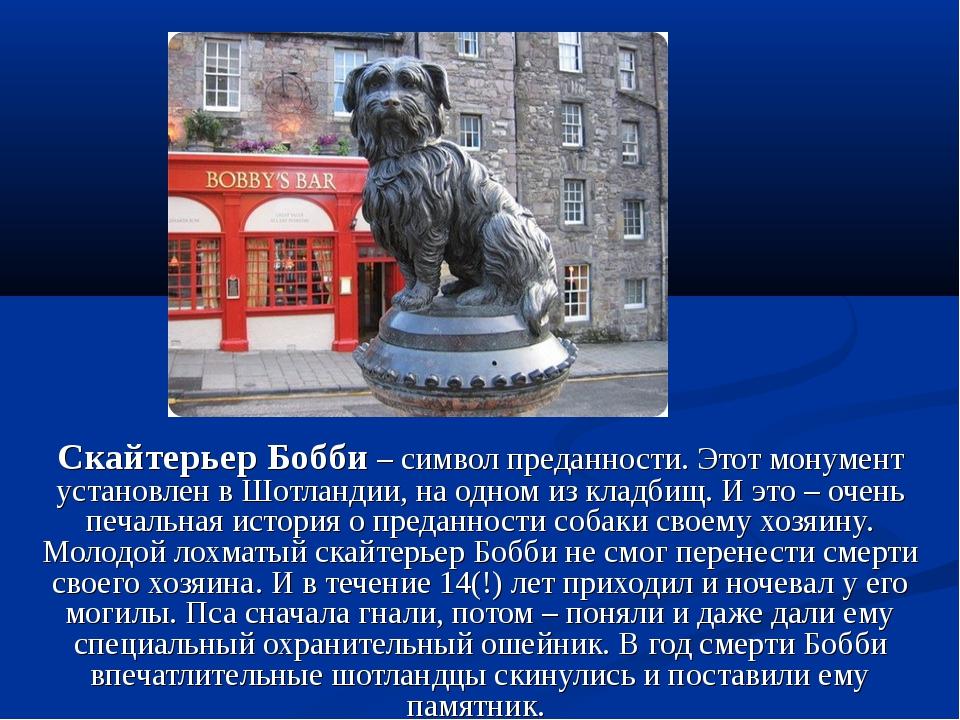 Скайтерьер Бобби – символ преданности. Этот монумент установлен в Шотландии,...