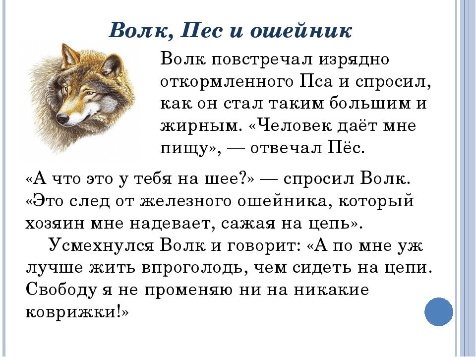 Волк, Пес и ошейник  «А что это у тебя на шее?» — спросил Волк. «Это след от...