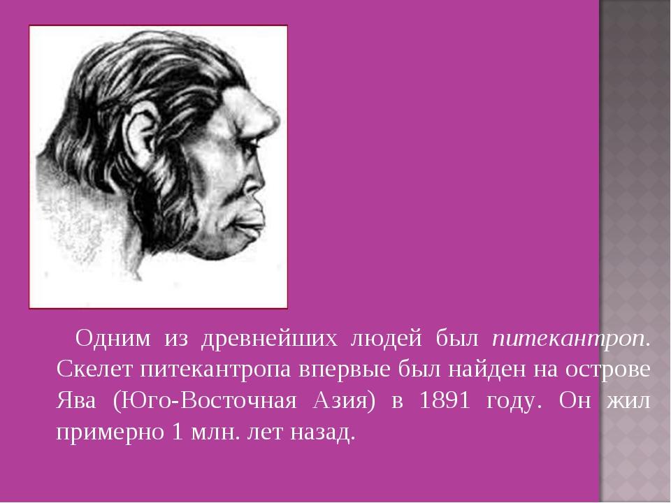 Одним из древнейших людей был питекантроп. Скелет питекантропа впервые был н...