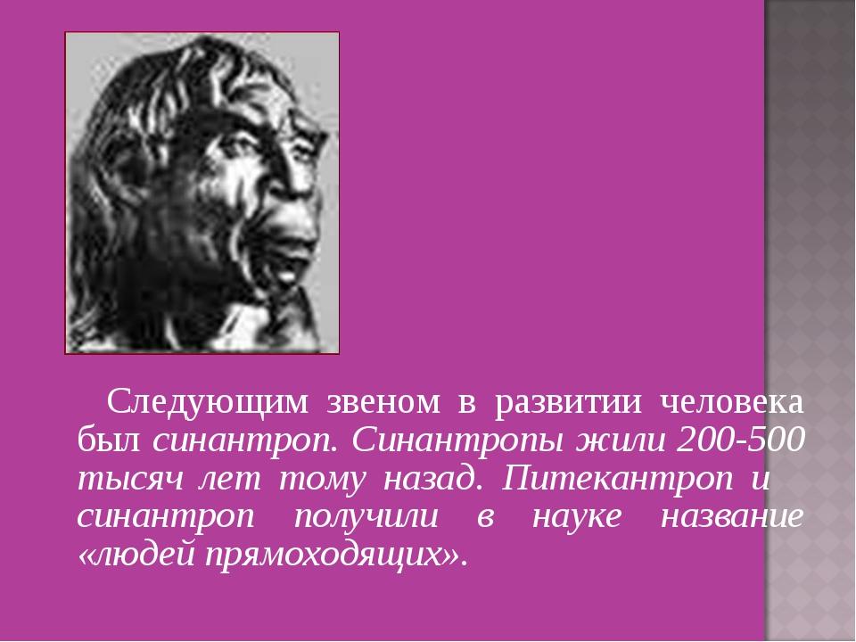 Следующим звеном в развитии человека был синантроп. Синантропы жили 200-500...