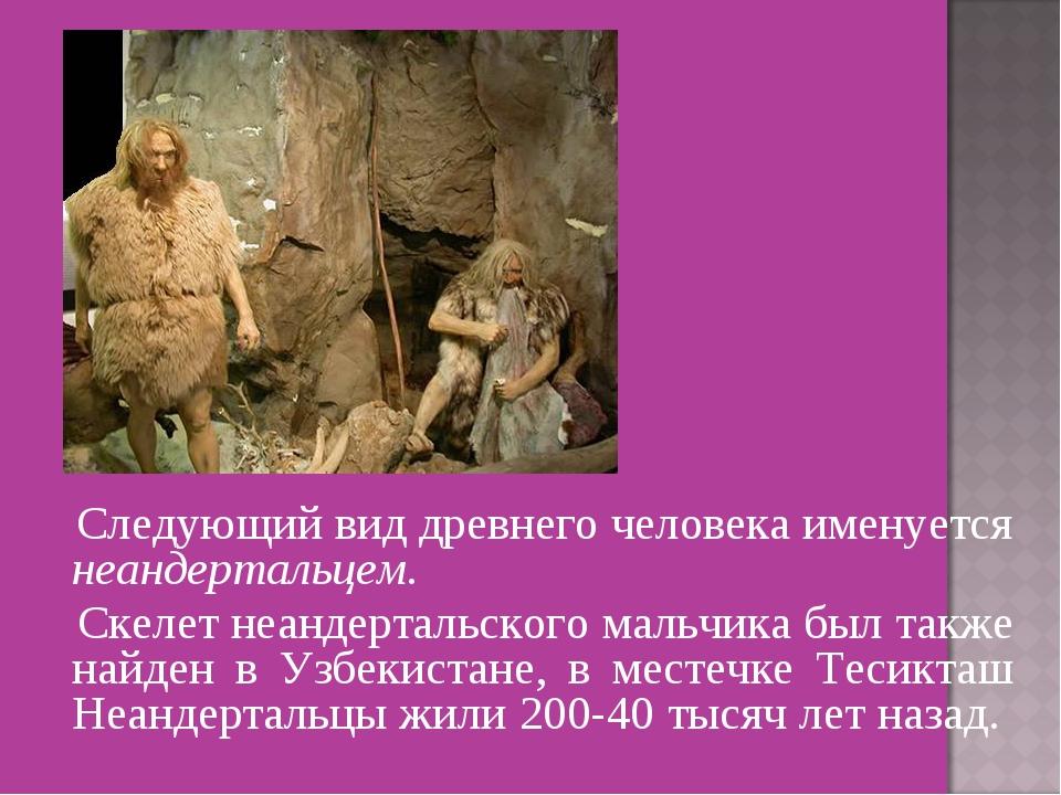 Следующий вид древнего человека именуется неандертальцем. Скелет неандерталь...