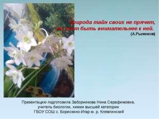 Природа тайн своих не прячет, но учит быть внимательнее к ней. (А.Рыленков) П
