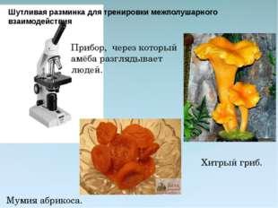 Прибор, через который амёба разглядывает людей.  Мумия абрикоса. Хитрый гриб