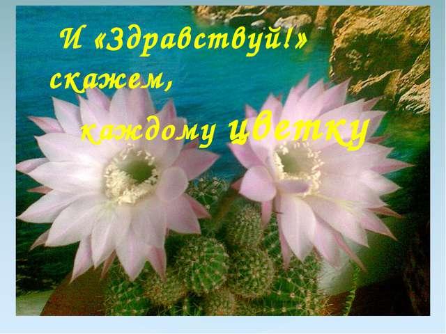 И «Здравствуй!» скажем, каждому цветку {