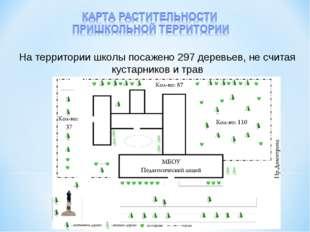 На территории школы посажено 297 деревьев, не считая кустарников и трав