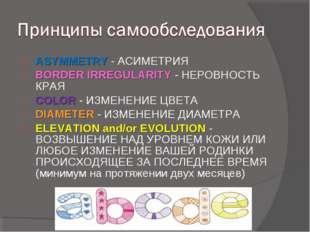 ASYMMETRY- АСИМЕТРИЯ BORDER IRREGULARITY- НЕРОВНОСТЬ КРАЯ COLOR- ИЗМЕНЕНИ