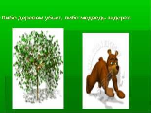 Либо деревом убьет, либо медведь задерет.