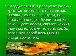 """Нередко леший в рассказах русских крестьян огромен, """"с глазами как звезды"""", х"""