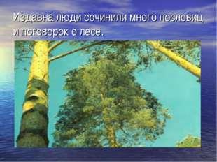 Издавна люди сочинили много пословиц и поговорок о лесе.