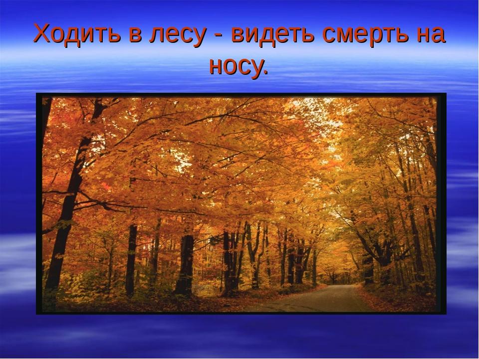 Ходить в лесу - видеть смерть на носу.