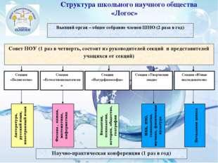 Высший орган – общее собрание членов ШНО (2 раза в год)  Научно-практическая
