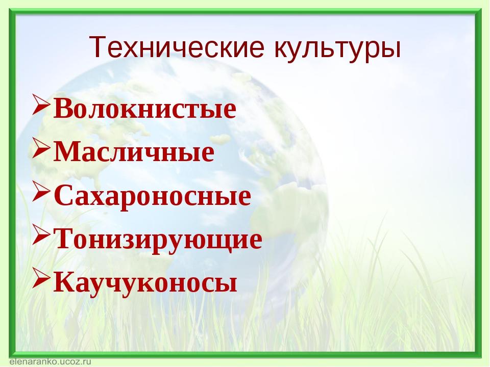 Технические культуры Волокнистые Масличные Сахароносные Тонизирующие Каучукон...