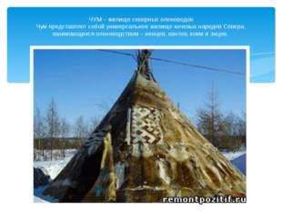 ЧУМ – жилище северных оленеводов Чум представляет собой универсальное жилище