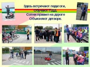 Здесь встречают педагоги, Обучают ПДД. Сотни правил на дороге Объясняют детво