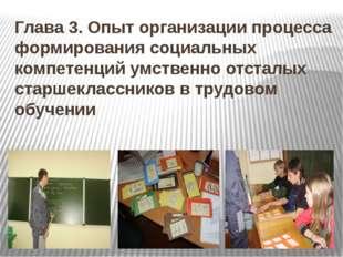 Глава 3. Опыт организации процесса формирования социальных компетенций умстве