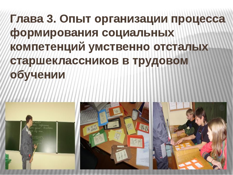 Глава 3. Опыт организации процесса формирования социальных компетенций умстве...