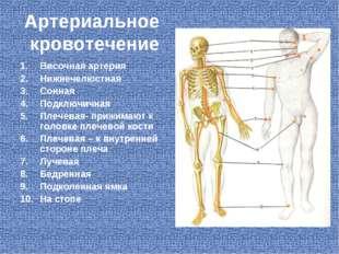 Артериальное кровотечение Височная артерия Нижнечелюстная Сонная Подключичная