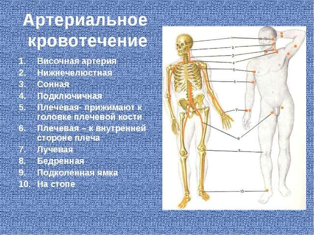 Артериальное кровотечение Височная артерия Нижнечелюстная Сонная Подключичная...
