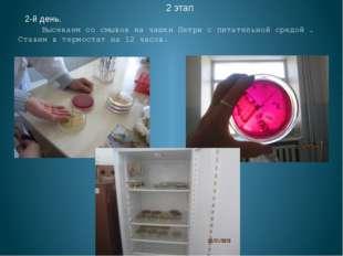 2 этап 2-й день. Высеваем со смывов на чашки Петри с питательной средой . Ст