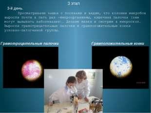 3 этап 3-й день. Просматриваем чашки с посевами и видим, что колонии микробов