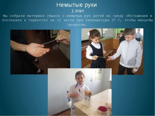 Немытые руки 1 этап Мы собрали материал смывов с немытых рук детей на среду...