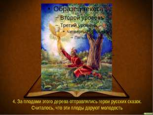 4. За плодами этого дерева отправлялись герои русских сказок. Считалось, что