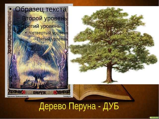 Дерево Перуна - ДУБ