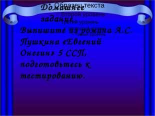 Домашнее задание Выпишите из романа А.С. Пушкина «Евгений Онегин» 5 ССП, под