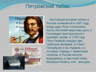 Петровский табак. Настоящая история табака в России начинается в 1697 году, к