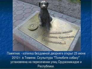 Памятник - копилка бездомной дворняге открыт 25 июня 2010 г. в Тюмени. Скульп
