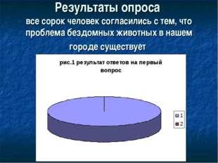 Результаты опроса все сорок человек согласились с тем, что проблема бездомных