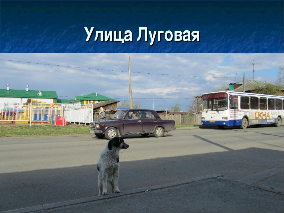 Улица Луговая